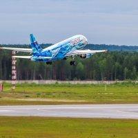 Russia Airlines :: Евгений Пикаревский