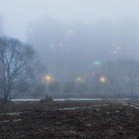Городские светлячки :: Владимир Колесников