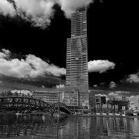 Устремлённый в небо :: Alexander Andronik