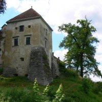замок и дерево :: Богдан Вовк