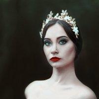 Темный лебедь :: Елена Полянская