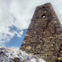 Трёхсотлетний страж гор.Северная Осетия. Фиагдон. :: Олег Стасенко