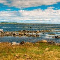 Соловецкие острова. Берег Белого моря. :: Николай
