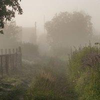 Утро в деревне :: Светлана Григорьева