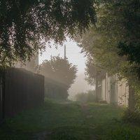 Туман :: Светлана Григорьева
