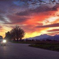 пылали закаты :: Elena Wymann