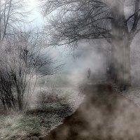 Сиреневый туман :: Юрий. Шмаков