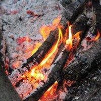 Живительное пламя :: Яна Прыганова