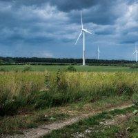 Ветряные мельницы :: Anna Klaos