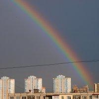 Rainbow :: Олег Шендерюк