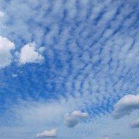 Sky ripples :: Олег Шендерюк