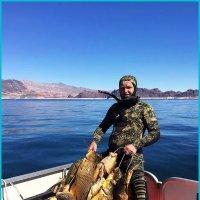Вот это рыбалка !!! :: Николай Дони