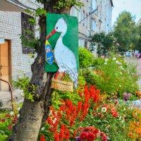 Цветы у дома :: юрий Амосов