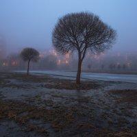 Туманный вечер :: Владимир Колесников