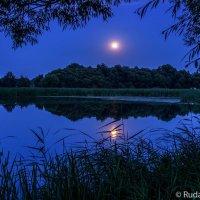 Вечер на Цне в ночь полной луны :: Сергей