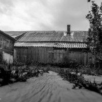 Деревенские мотивы - дорожка к дому :: Silver Light