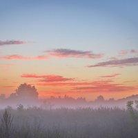 Я сидел тихо, мирно. Потом проголодался. Дальше, как в тумане.  © :: Svetlana Uryupina