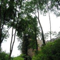 Замок на вершине холма :: Tanja Gerster