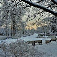 В зимнем Парке... :: Sergey Gordoff