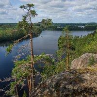 Вид на оз.Сараярви с горы Хауккавуори. Финляндия. :: Тиша