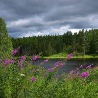 Пейзаж с рекой. :: Наталья