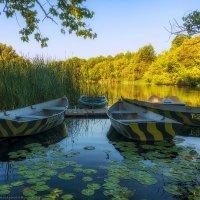 Лодочки на отдыхе :: Валерий Горбунов