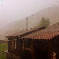 Дождь на Алтае . :: Мила Бовкун