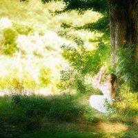 Волшебный лес :: Natalia 084