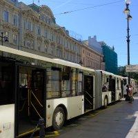 Бесконечный автобус :: Андрей Михайлин
