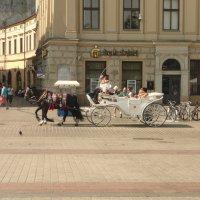 Краковское развлечение :: Galina Belugina