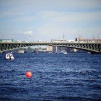 Вид на Троицкий мост. :: Светлана Калмыкова
