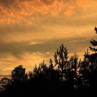 Следят за нами небеса... :: Ирина Румянцева