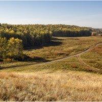 Окрестность деревни Рагозина :: Александр Максимов