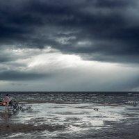 После урагана :: Peiper ///