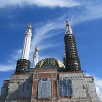 Недостроенная мечеть :: Вера Щукина