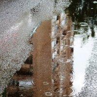 Отражение в дождь. :: Марина Харченкова
