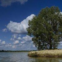 островок :: ирина лузгина