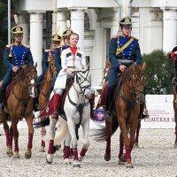 непослушный ли конь :: Олег Лукьянов