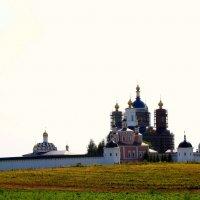 Свенский монастырь, г. Брянск :: Алла Качуро