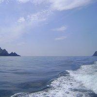 Ирланские острова Большой и Малый Скеллиг :: Марина Домосилецкая