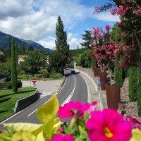 Удивительной красоты сады замка Трауттмансдорф ... :: Galina Dzubina