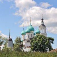 Среди полевых цветов, Толгский монастырь :: Николай Белавин