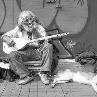 Завтрак уличного музыканта... вариант, монохром. :: Cергей Павлович