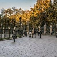 Вокруг храма Спас на Крови :: Valeriy Piterskiy