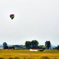 Воздушный шар :: Michael Averkiev