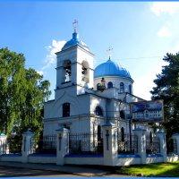 Собор Рождества Пресвятой Богородицы :: Светлана