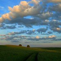 Летний вечер плыл над миром ... :: Евгений Юрков