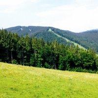 Склон горнолыжного курота Буковель :: Наталия Каминская