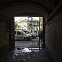 Петербург. Взгляд изнутри. :: Senior Веселков Петр
