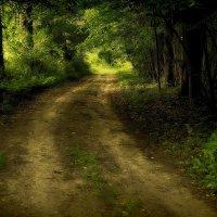Road... :: Perfect Stranger